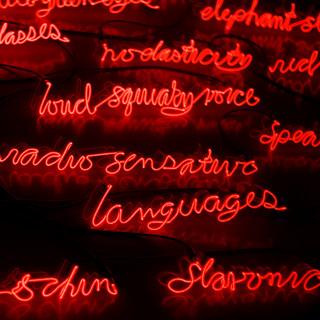 Avant d'appliquer pour la citoyenneté, assurez-vous de maîtriser adéquatement une des deux langues officielles